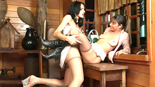 Breathtaking scoring with well-hung ladyboy and slutty babe in silky tights